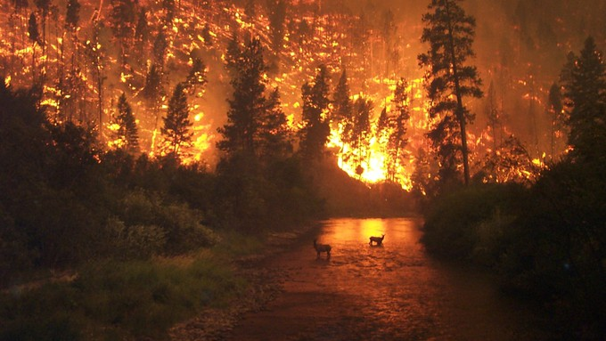 10 different districts combine to fight fires in Nevada County.