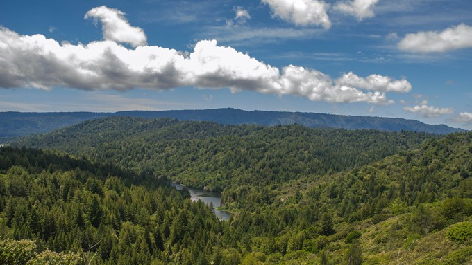 A picture of the Santa Cruz mountains and Loch Lomond.